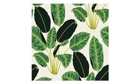 Emerald Cubanas Wallpaper